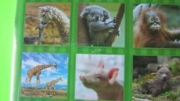 2020 BABY ANIMALS Monthly Small Mini Calendar monthly planne